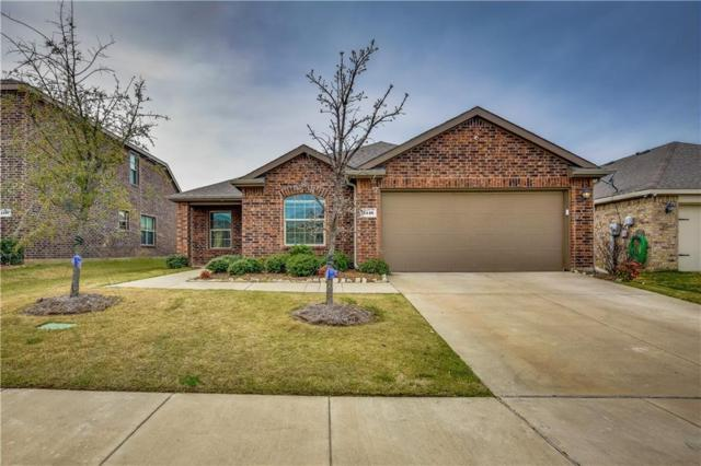 2116 Meadow View Drive, Princeton, TX 75407 (MLS #14048349) :: The Daniel Team