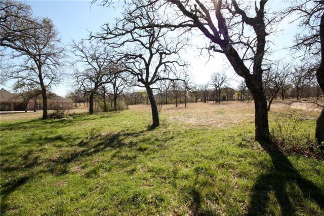 000 S Sugartree Drive, Lipan, TX 76462 (MLS #14048619) :: The Chad Smith Team