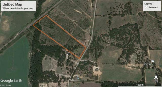 TBD 5 Newberry Road, Millsap, TX 76066 (MLS #14048744) :: The Heyl Group at Keller Williams