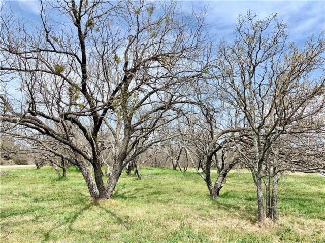 9657 County Road 204, Breckenridge, TX 76424 (MLS #14048982) :: Frankie Arthur Real Estate
