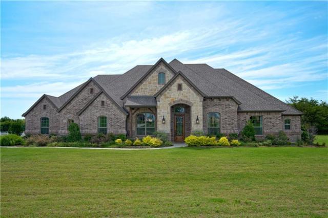 155 Chisholm Ranch Drive, Rockwall, TX 75032 (MLS #14049786) :: Baldree Home Team