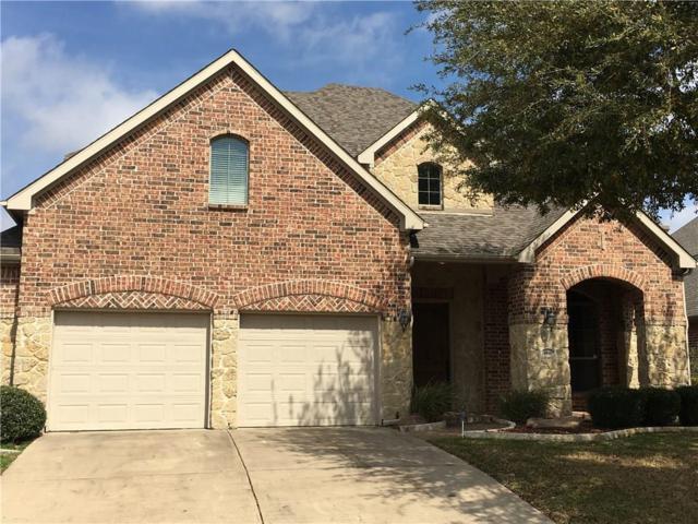 4041 White Porch Road, Plano, TX 75024 (MLS #14049955) :: HergGroup Dallas-Fort Worth