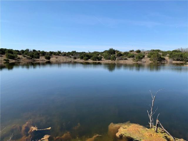 TBD 8 Taylor Ridge Estate Rd, Abilene, TX 79536 (MLS #14050913) :: The Heyl Group at Keller Williams
