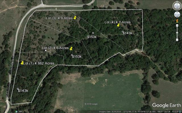 003 Garner Adell Lot 3, Weatherford, TX 76088 (MLS #14051154) :: RE/MAX Town & Country