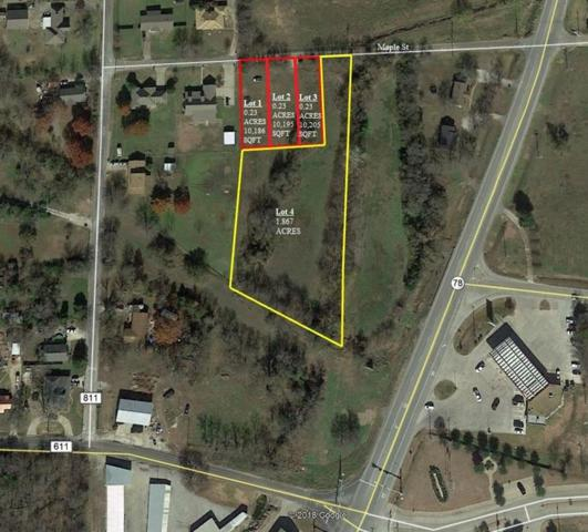 1.9 Ac Maple Street, Farmersville, TX 75442 (MLS #14051172) :: The Heyl Group at Keller Williams