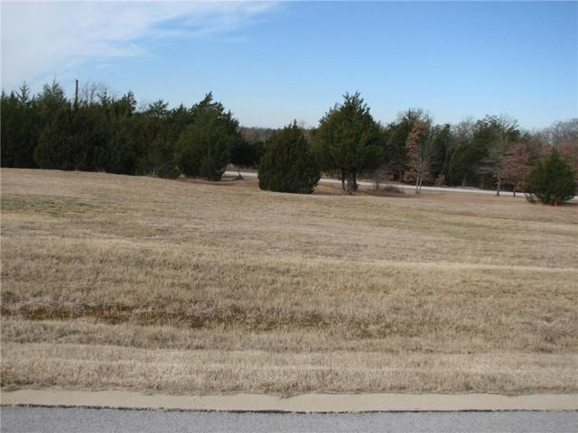138 La Paloma Lot 24 Circle, Gordonville, TX 76245 (MLS #14051419) :: The Heyl Group at Keller Williams