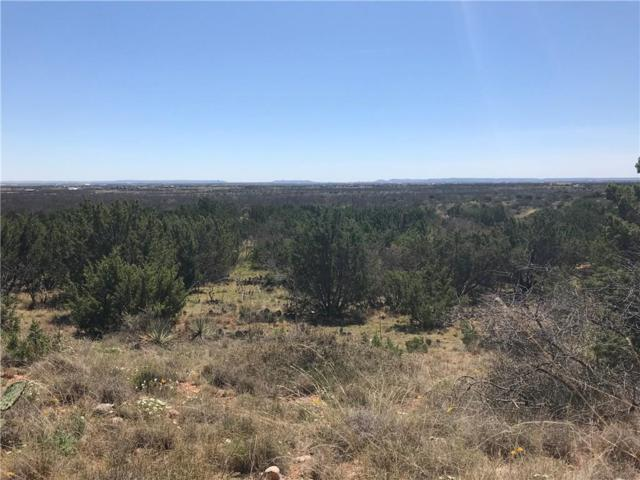 TBD 11 Taylor Ridge Estate Rd, Abilene, TX 79536 (MLS #14051789) :: The Heyl Group at Keller Williams