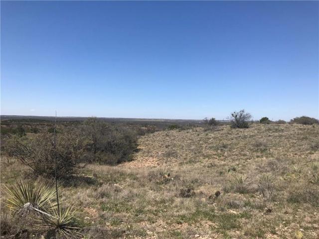 TBD 10 Taylor Ridge Estate Rd, Abilene, TX 79536 (MLS #14052083) :: The Heyl Group at Keller Williams
