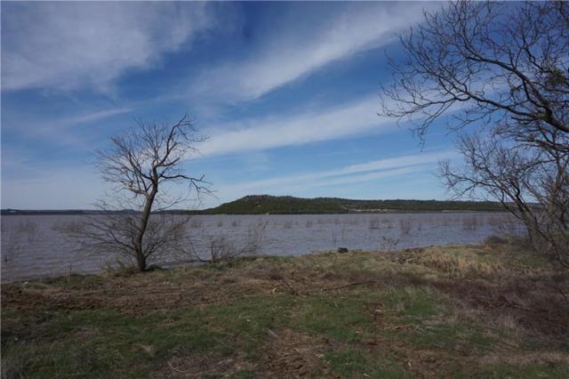 Lt 938 Frog Branch, Possum Kingdom Lake, TX 76449 (MLS #14052686) :: Robbins Real Estate Group
