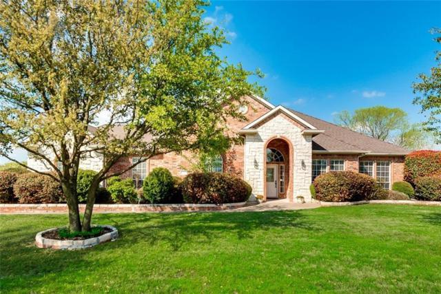 1065 W Secretariat Drive, Terrell, TX 75160 (MLS #14053515) :: RE/MAX Landmark
