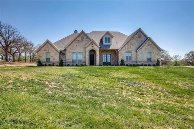 161 Private Road 4590, Boyd, TX 76023 (MLS #14053759) :: RE/MAX Town & Country