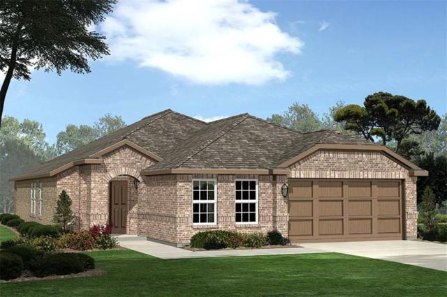 4832 Feltleaf Avenue, Fort Worth, TX 76036 (MLS #14053821) :: RE/MAX Town & Country