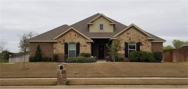 5605 Red Rose Trail, Midlothian, TX 76065 (MLS #14055330) :: The Chad Smith Team