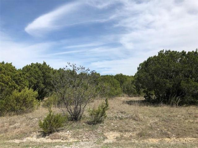 5507 Van Horn Drive, Granbury, TX 76048 (MLS #14056018) :: RE/MAX Town & Country