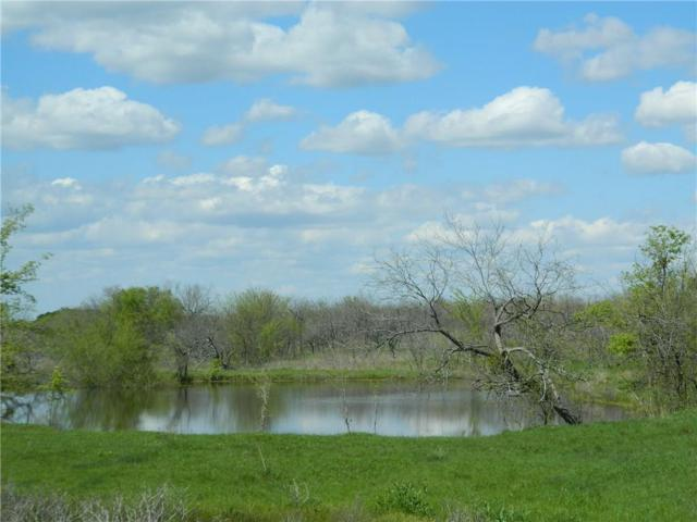 00 County Road 4250, Dawson, TX 76639 (MLS #14056541) :: RE/MAX Town & Country