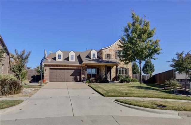 4300 Citabria Drive, Mckinney, TX 75072 (MLS #14057351) :: RE/MAX Town & Country