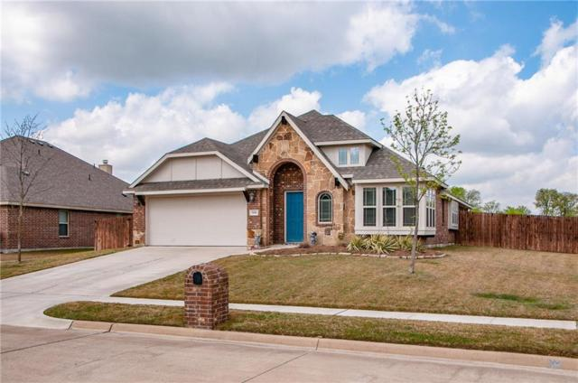 5601 Red Rose Trail, Midlothian, TX 76065 (MLS #14060088) :: The Chad Smith Team