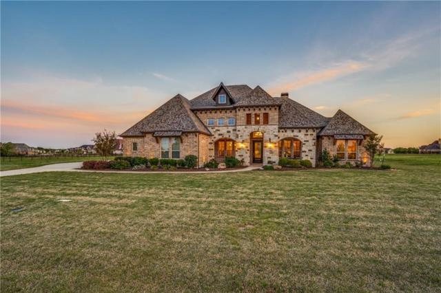 903 N Bluffview Drive, Lucas, TX 75002 (MLS #14060825) :: Frankie Arthur Real Estate