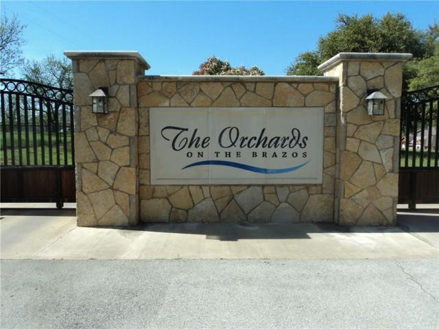 10097 Orchards Boulevard, Cleburne, TX 76033 (MLS #14061080) :: The Good Home Team