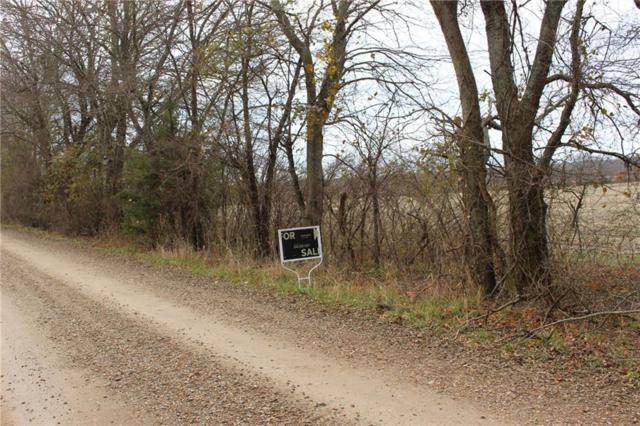 TBD County Rd 4040, Ector, TX 75439 (MLS #14061476) :: The Chad Smith Team