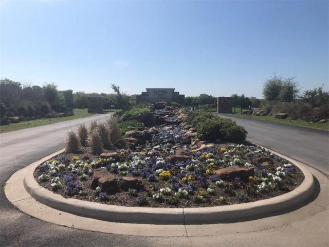 257 Martin Drive, Granbury, TX 76049 (MLS #14061869) :: The Rhodes Team