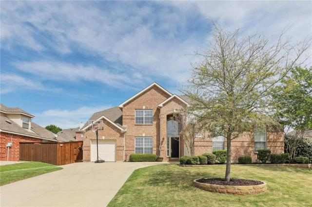 10984 Star Meadow Drive, Frisco, TX 75033 (MLS #14062421) :: The Heyl Group at Keller Williams