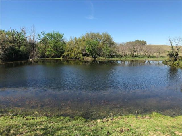 122 ac Cr 398, Lingleville, TX 76461 (MLS #14063076) :: Kimberly Davis & Associates