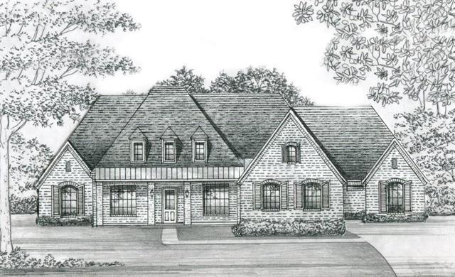 4706 Whitestone Drive, Parker, TX 75002 (MLS #14063429) :: Baldree Home Team