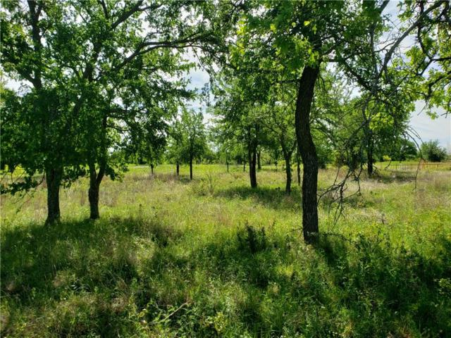 TBD Feather Bay Blvd Boulevard, Brownwood, TX 76801 (MLS #14063746) :: The Mitchell Group