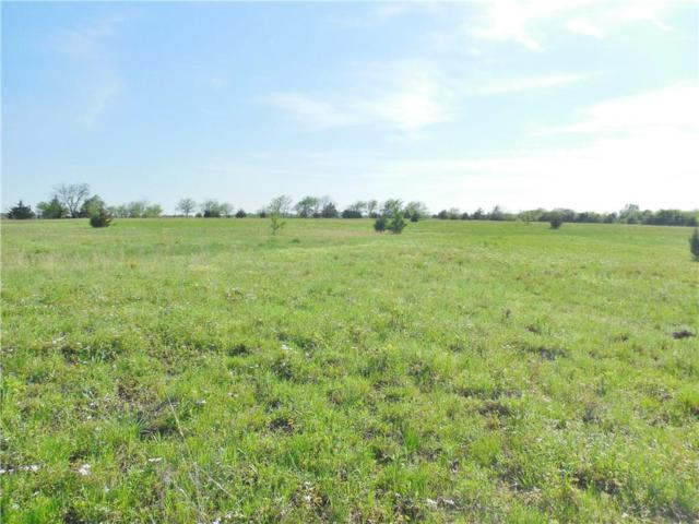 TBD State Hwy 56-42.069 Ac, Bells, TX 75414 (MLS #14063824) :: The Tierny Jordan Network