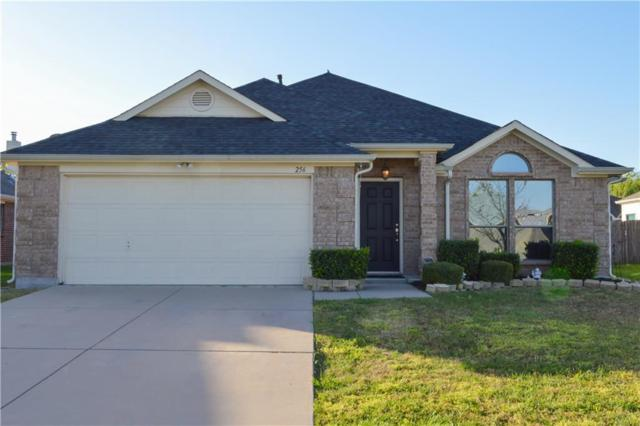 256 Flatwood Drive, Little Elm, TX 75068 (MLS #14064239) :: RE/MAX Town & Country