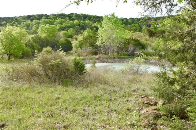 TBD Autumn Valley, Bluff Dale, TX 76433 (MLS #14064356) :: Real Estate By Design