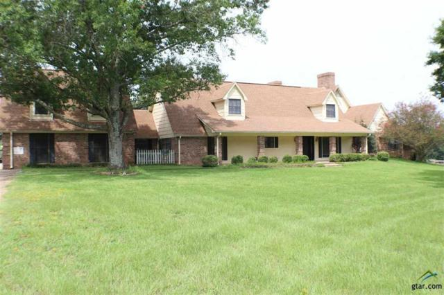12838 County Road 192, Tyler, TX 75703 (MLS #14064778) :: RE/MAX Town & Country