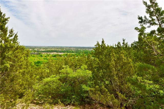 358 Bluff View Court, Bluff Dale, TX 76433 (MLS #14064935) :: RE/MAX Town & Country