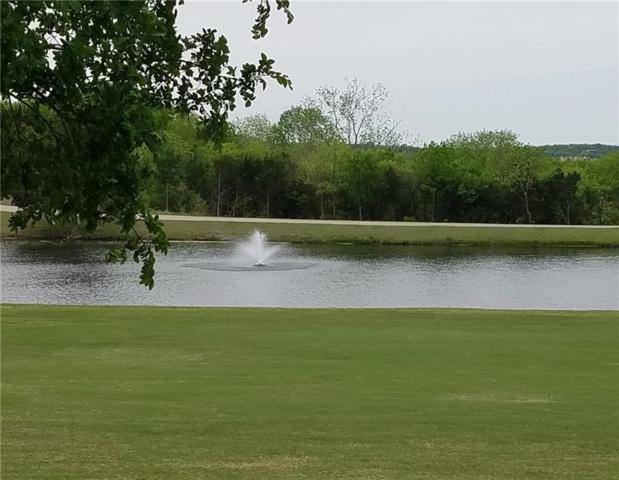TBD Palmer Lane, Pottsboro, TX 75076 (MLS #14065007) :: RE/MAX Town & Country