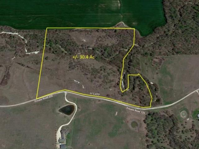 30 Ac Private Road326, Bynum, TX 76631 (MLS #14065054) :: Robbins Real Estate Group
