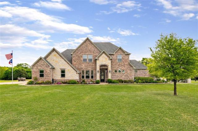 4043 Tracy Lane, Greenville, TX 75402 (MLS #14065224) :: The Hornburg Real Estate Group