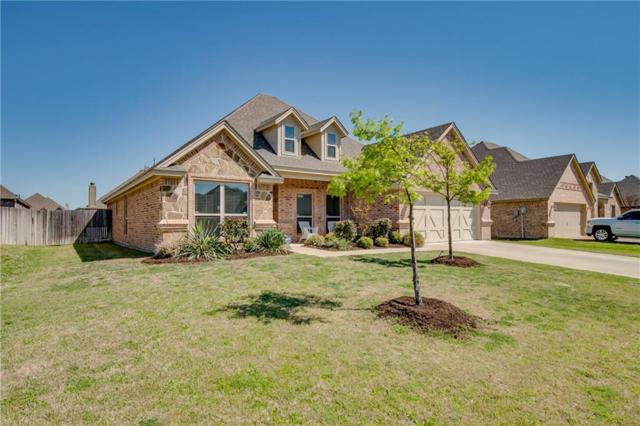 153 Whitetail Drive, Willow Park, TX 76008 (MLS #14065454) :: The Hornburg Real Estate Group