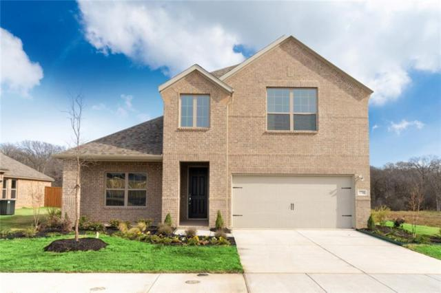 1701 Angus Drive, Little Elm, TX 75068 (MLS #14065614) :: RE/MAX Town & Country