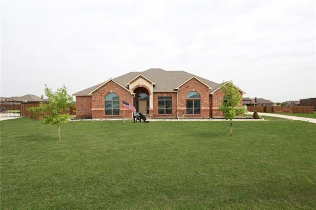 125 Thames Circle, Waxahachie, TX 75165 (MLS #14065650) :: The Hornburg Real Estate Group