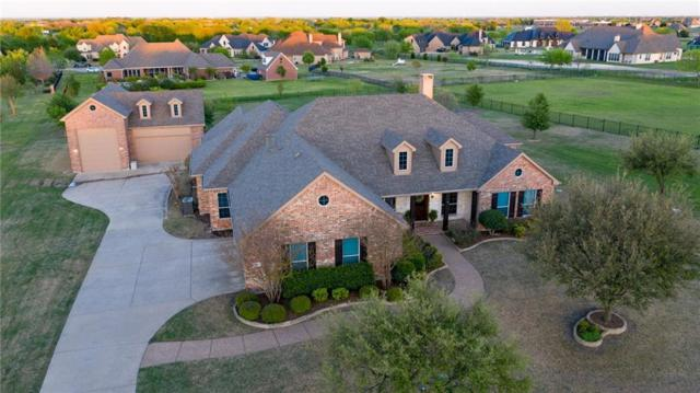 1700 Briardale Drive, Lucas, TX 75002 (MLS #14066229) :: North Texas Team | RE/MAX Lifestyle Property