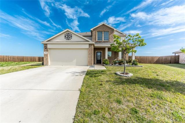 301 Plum Drive, Josephine, TX 75173 (MLS #14066555) :: RE/MAX Town & Country