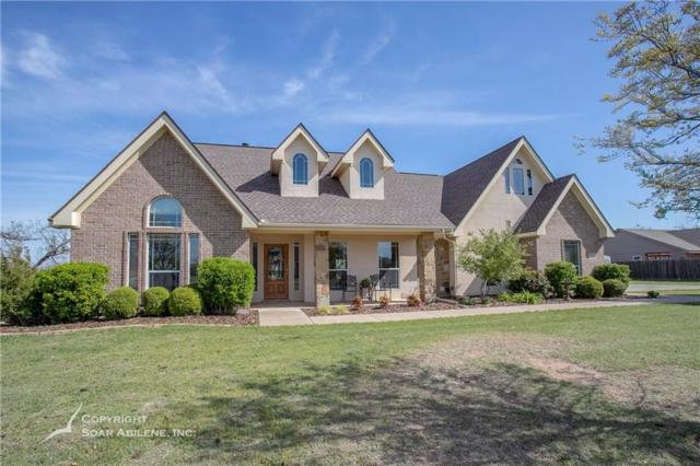 318 Apple Blossom Drive, Abilene, TX 79602 (MLS #14066602) :: RE/MAX Town & Country