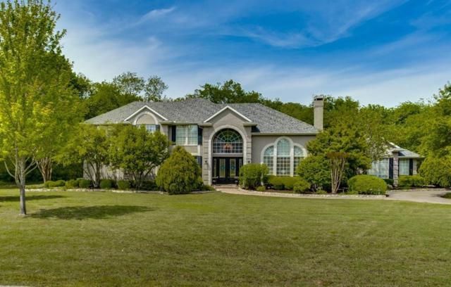 361 Ashwood Lane, Fairview, TX 75069 (MLS #14066649) :: The Hornburg Real Estate Group