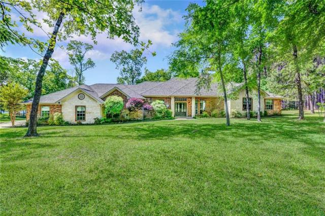 8865 Striper Cove, Larue, TX 75770 (MLS #14067065) :: Real Estate By Design