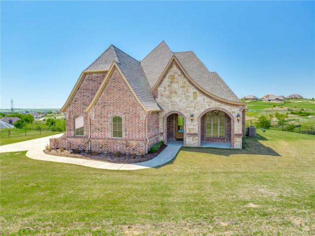 12409 Bella Colina Drive, Fort Worth, TX 76126 (MLS #14067438) :: Baldree Home Team