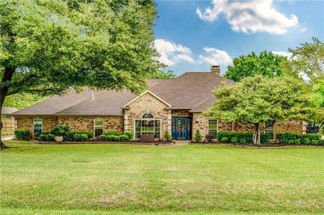301 Willow Creek Circle, Allen, TX 75002 (MLS #14067835) :: RE/MAX Town & Country