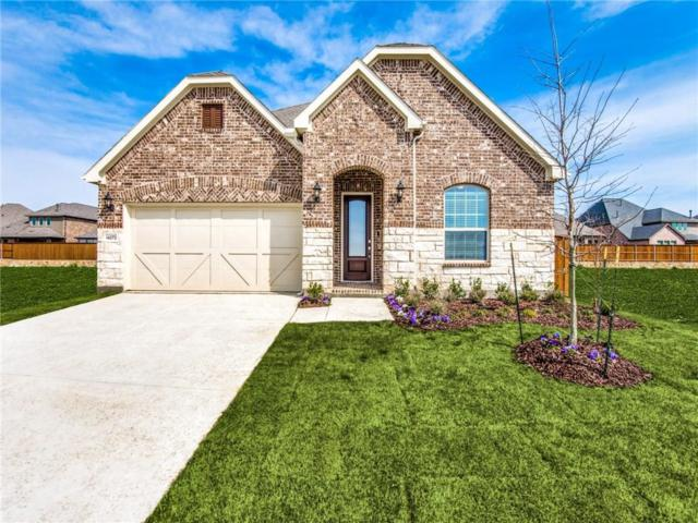 14272 Gatewood Drive, Frisco, TX 75035 (MLS #14068269) :: The Mitchell Group