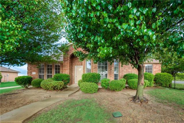 1961 Trail Glen, Rockwall, TX 75032 (MLS #14068420) :: HergGroup Dallas-Fort Worth