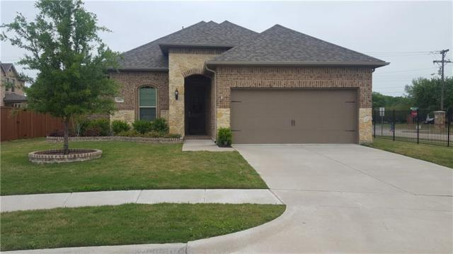 1002 Pampa Drive, Murphy, TX 75094 (MLS #14068561) :: Hargrove Realty Group